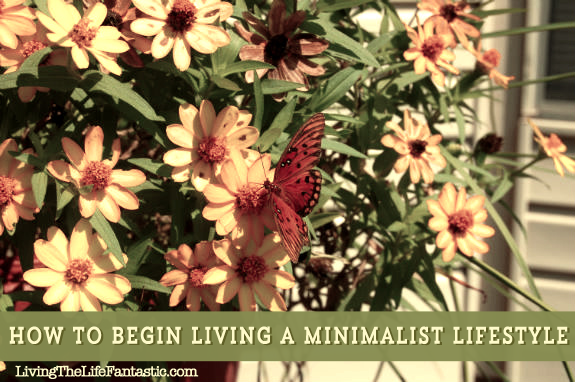 butterfly1 How to Begin Living a Minimalist Lifestyle